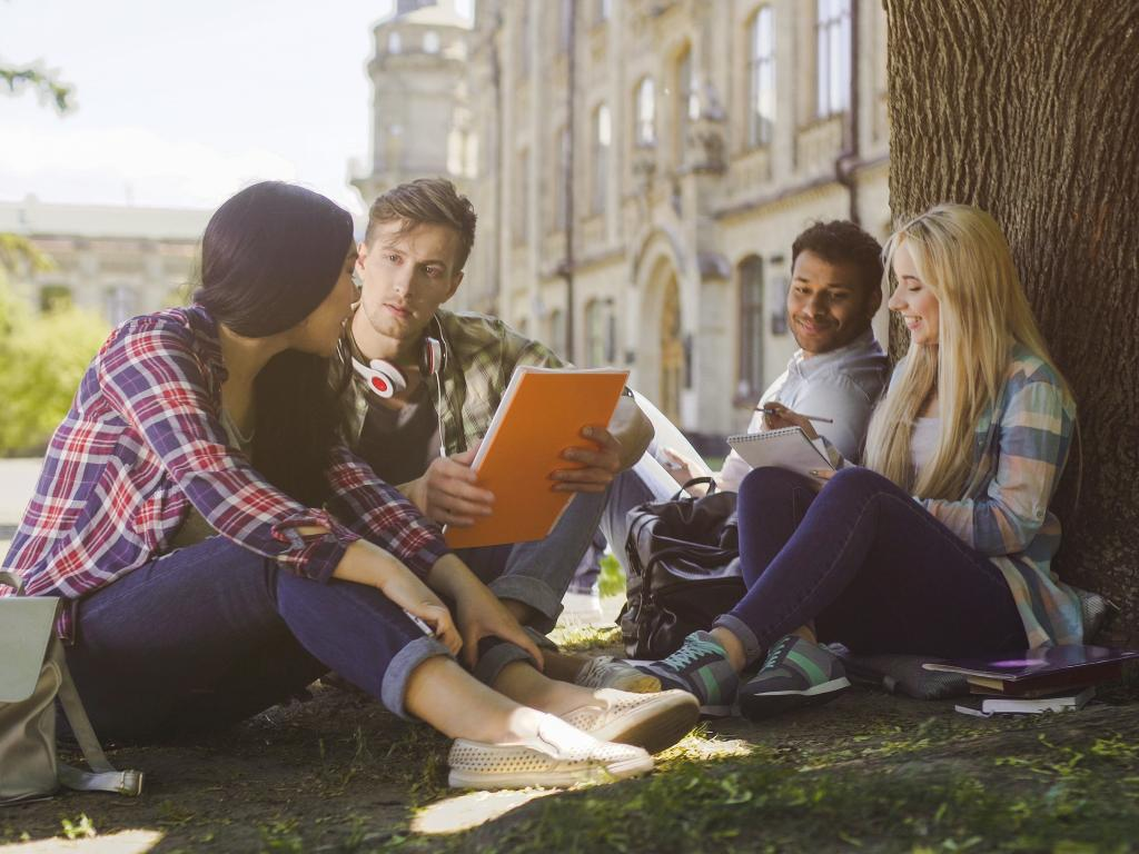 Students studying under a tree outside with a university building in the background.